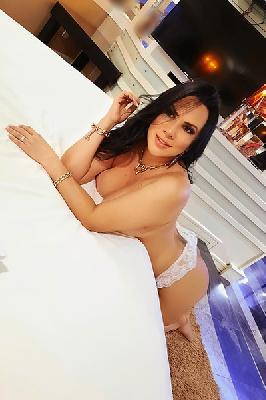 Anita Rodriguez - Acompanhantes Florianópolis - Acompanhantes Floripa - Acompanhantes SC