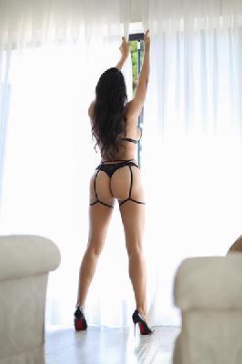 Bárbara Salles - Acompanhantes São Paulo - Acompanhantes SP - Acompanhantes SP