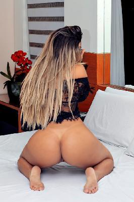 Nicolli Zurkin - Acompanhantes São Paulo - Acompanhantes SP - Acompanhantes SP